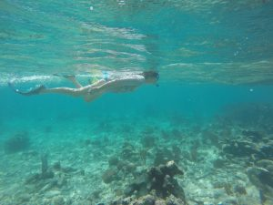 an image of a woman swimming off the Belize shore during a Bushmasters island survival adventure
