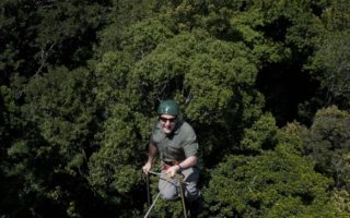 an image of a smiling man abseiling into the rainforest below