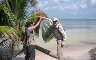 an image of two men collecting condensation from palm trees