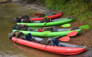 an image of four kayaks on a jungle expedition venture