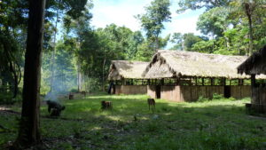 an image of a collection of tribal huts in the middle of the jungle