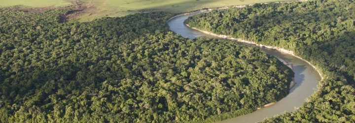 an image of the glorious Rupununi river weaving through the rainforest of Guyana's jungle