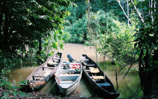 An image of three boats on a river bank