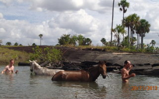 An image of two men and their horses bathing in a small lake in Guyana