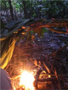 picture of a fire started in the jungle as part of a jungle survival course