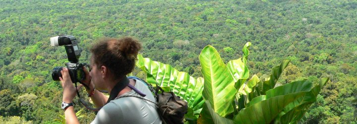 An image of the stunning scenery of the Guyanan jungle, one of the many reasons to visit Guyana