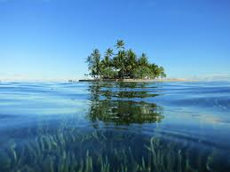 An image of a desert island, similar to that survived on by castaways