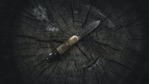 An image of a pocket knife on a stump.